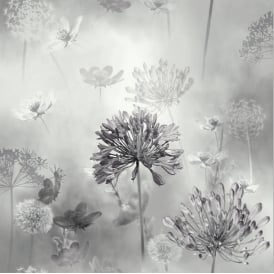 Floral Spring Meadow Grey And White Wallpaper 697401