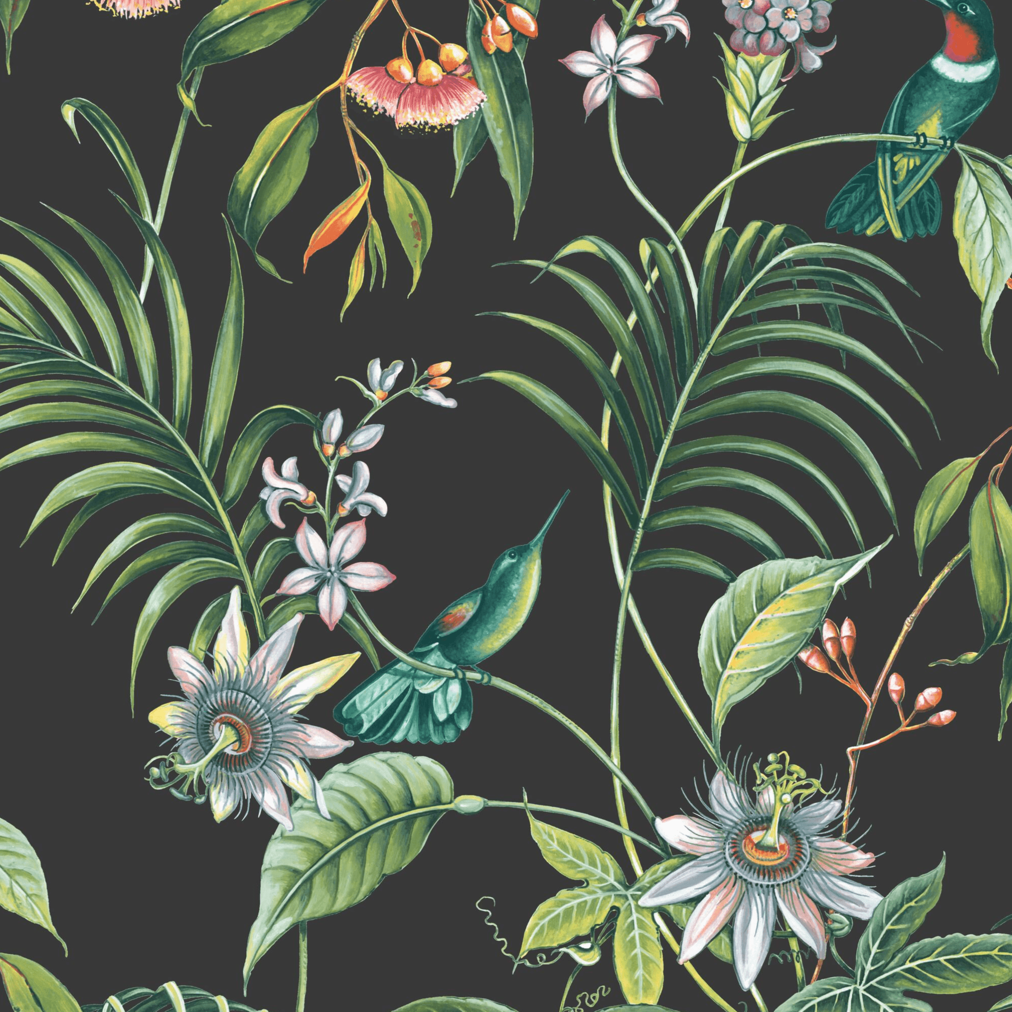 Graham Brown Adilah Dark Floral Birds Wallpaper 106976