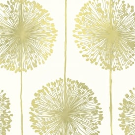 Lime Green And Cream Dandelion Floral Wallpaper J04204