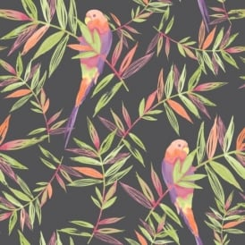 Tropical Parrots Birds And Leaves Painted Motif Wallpaper 209211